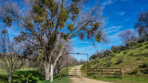 51563 Los Gatos Road, Coalinga, CA - USA (photo 4)