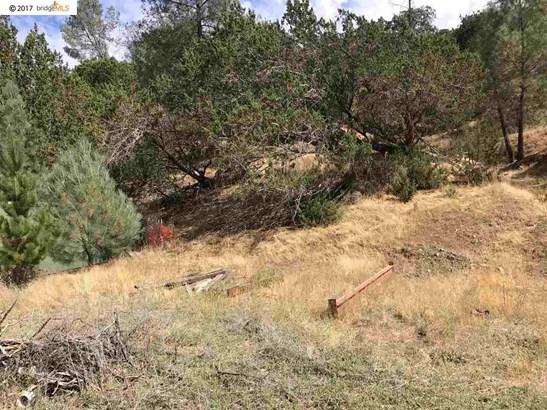 21484 Mines Road, Livermore, CA - USA (photo 3)