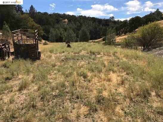 21484 Mines Road, Livermore, CA - USA (photo 4)