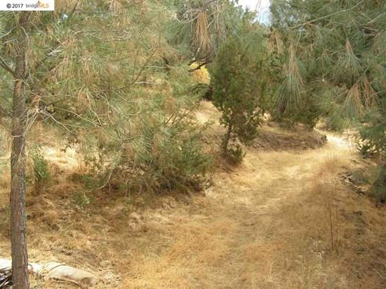 21484 Mines Road, Livermore, CA - USA (photo 5)