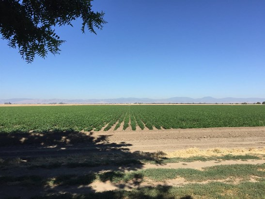 3843 State Highway 45, Colusa, CA - USA (photo 3)