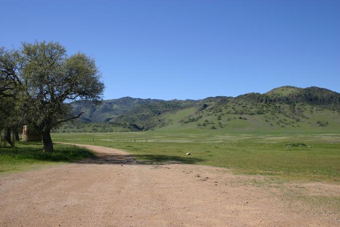 00000 West Billie Wright Road, Los Banos, CA - USA (photo 3)