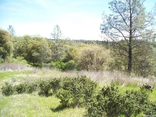 2861 Parkway, Placerville, CA - USA (photo 3)