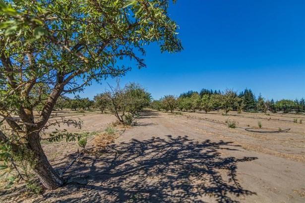 19469 South North Ripon Road, Ripon, CA - USA (photo 3)