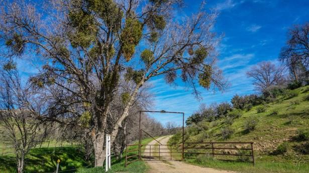 51563 Los Gatos Road, Hollister, CA - USA (photo 4)