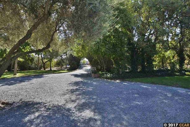 1171 Griffith Ln, Brentwood, CA - USA (photo 3)