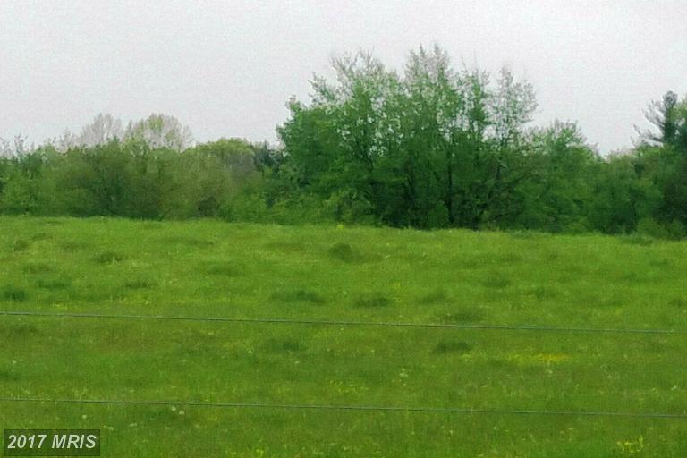 Lot-Land - BIG POOL, MD (photo 1)