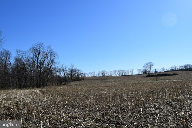 Vacant land - SMITHSBURG, MD (photo 4)