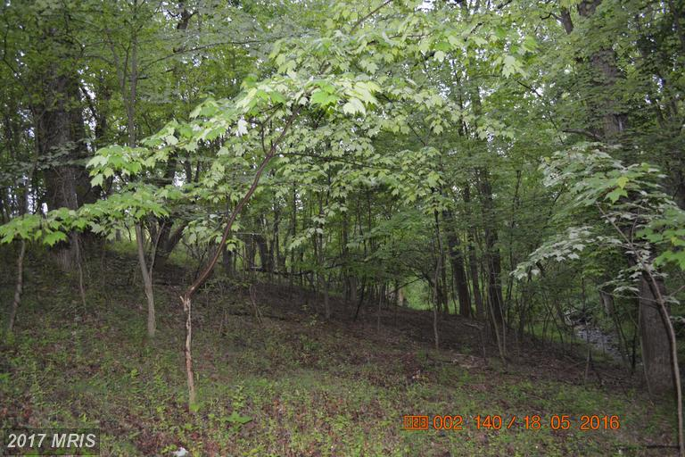 Lot-Land - BOONSBORO, MD (photo 2)