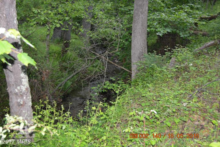 Lot-Land - BOONSBORO, MD (photo 4)