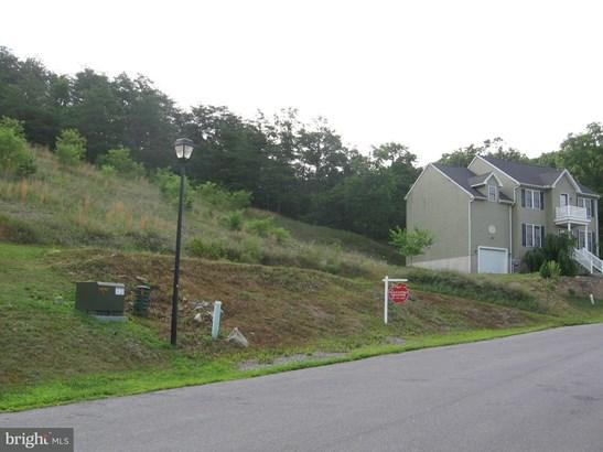 Land - HANCOCK, MD (photo 3)