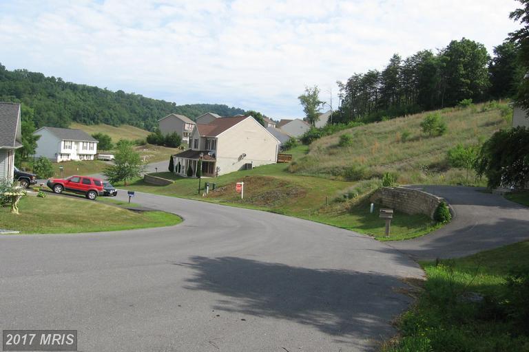 Lot-Land - HANCOCK, MD (photo 1)