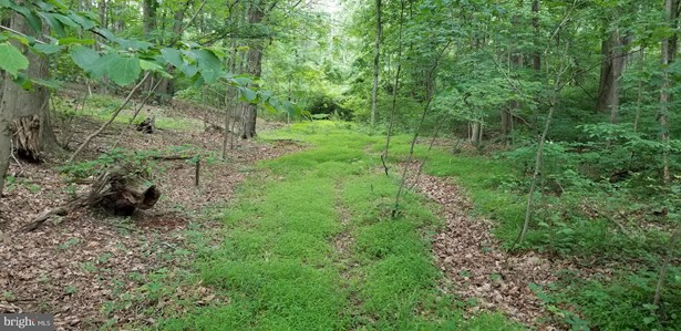 Vacant land - HEDGESVILLE, WV
