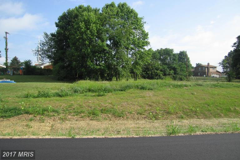 Lot-Land - WILLIAMSPORT, MD (photo 2)