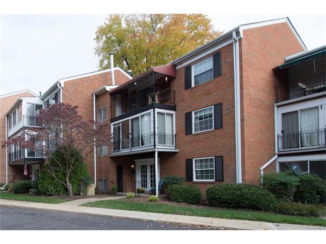 Condominium, Contemporary - Henrico, VA (photo 3)