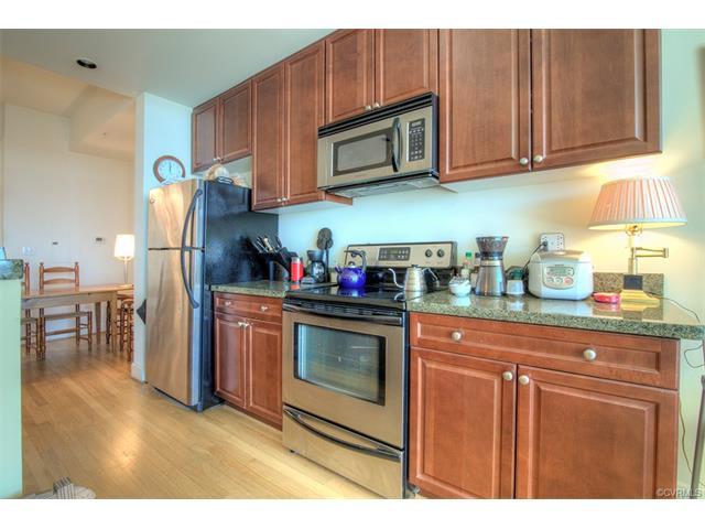 Condominium, Hi-Rise - Richmond, VA (photo 2)