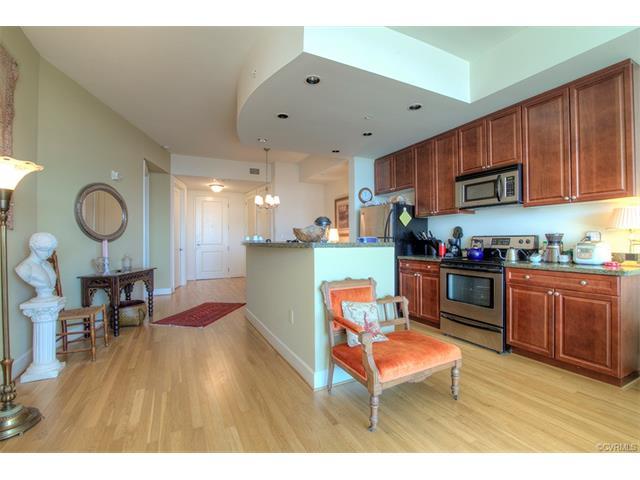 Condominium, Hi-Rise - Richmond, VA (photo 3)