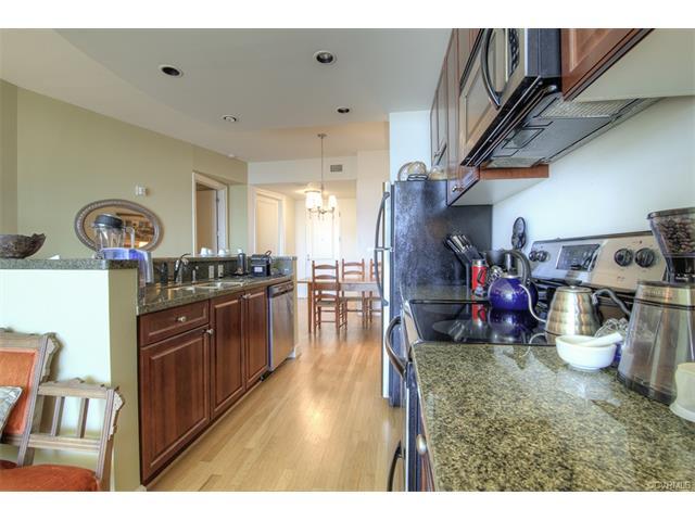 Condominium, Hi-Rise - Richmond, VA (photo 5)