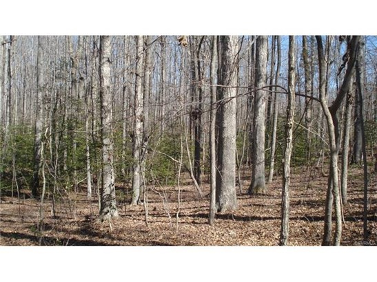 Residential Land - Goochland, VA (photo 2)