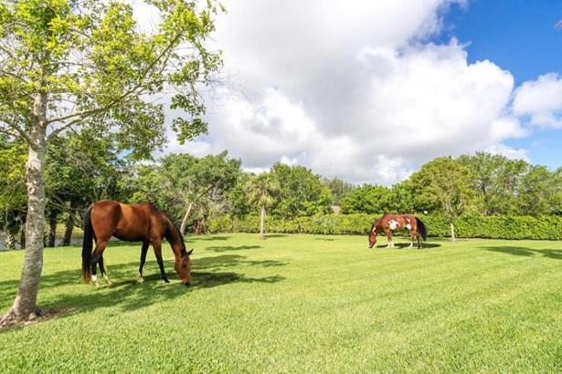 5335 Ridan Way, Palm Beach Gardens, FL - USA (photo 2)