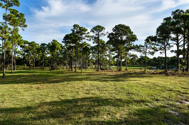 226 Bears Club Drive, Jupiter, FL - USA (photo 3)