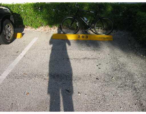 711 Lori Drive Unit 203, Palm Springs, FL - USA (photo 4)