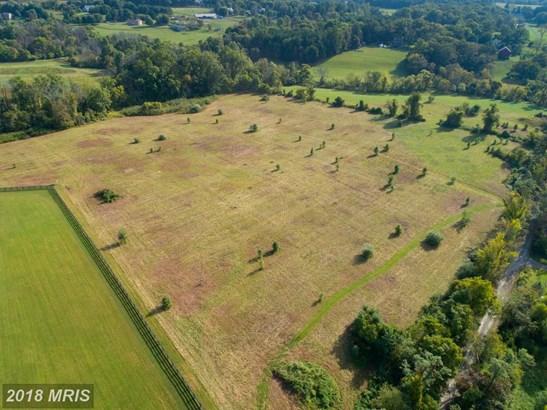 34394 Hollow Oak Rd, Bluemont, VA - USA (photo 5)