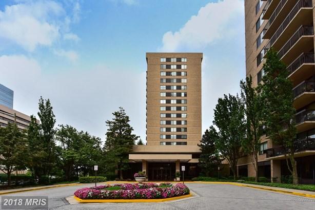 3709 George Mason Dr 1301, Falls Church, VA - USA (photo 3)