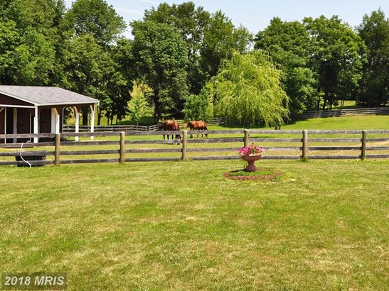 11502 Mica Pl, Lovettsville, VA - USA (photo 2)