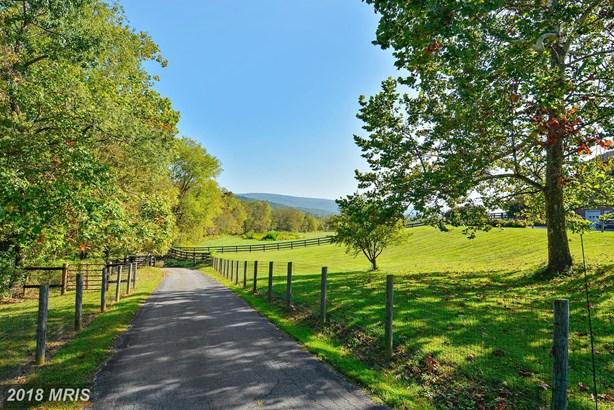 1727 Castleman Rd, Berryville, VA - USA (photo 4)