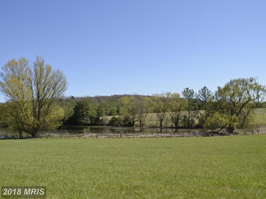 2043 Pleasant View Rd, Mount Jackson, VA - USA (photo 5)