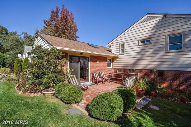 5220 Cather Rd, Springfield, VA - USA (photo 5)