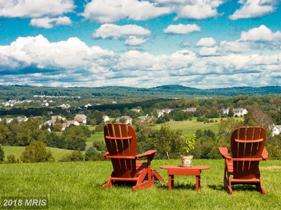 17175 Twin Maple Ln, Leesburg, VA - USA (photo 3)