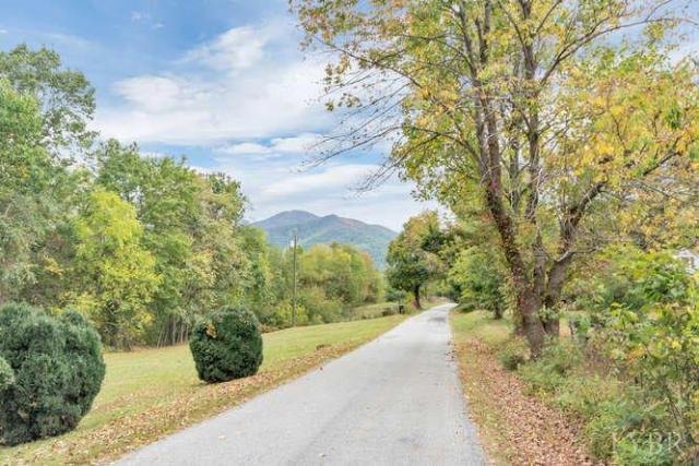1045 Thrashers Creek Road, Amherst, VA - USA (photo 5)