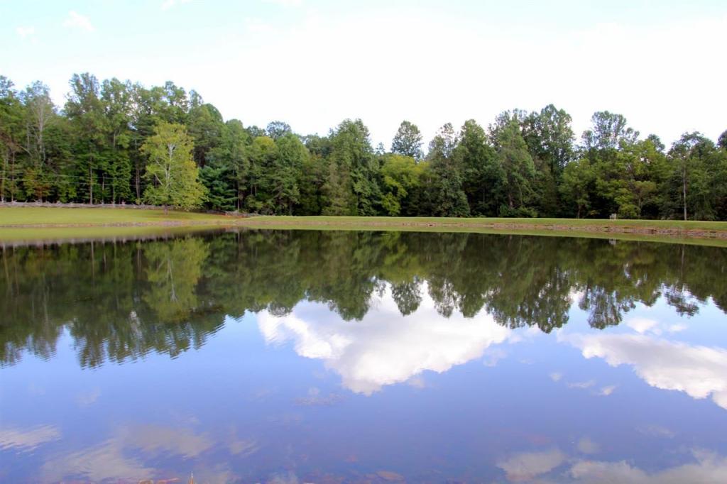 998 Mitchell Mountain Rd, Haywood, VA - USA (photo 5)