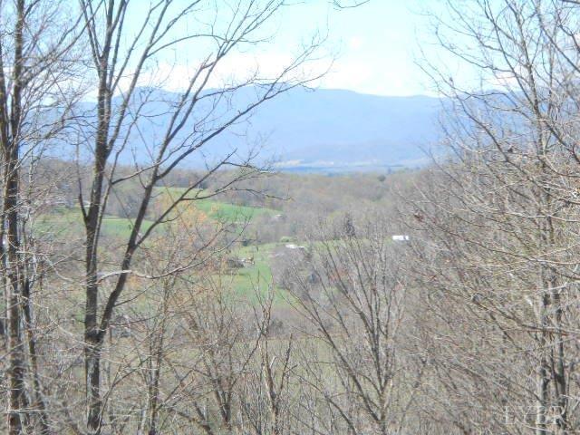 472 Diggs Mountain Rd., Arrington, VA - USA (photo 4)