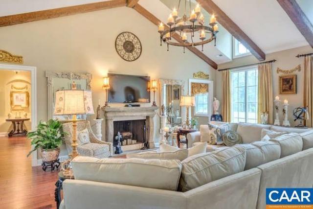 388 Villa Deste Ct, Charlottesville, VA - USA (photo 5)