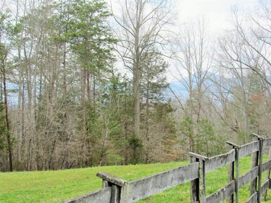 531 Long Branch Road, Amherst, VA - USA (photo 3)