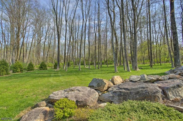 7 Old Mine Rd, Tewksbury Township, NJ - USA (photo 3)