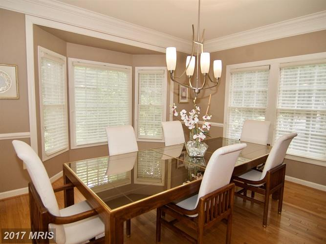 17802 Cricket Hill Dr, Germantown, MD - USA (photo 5)