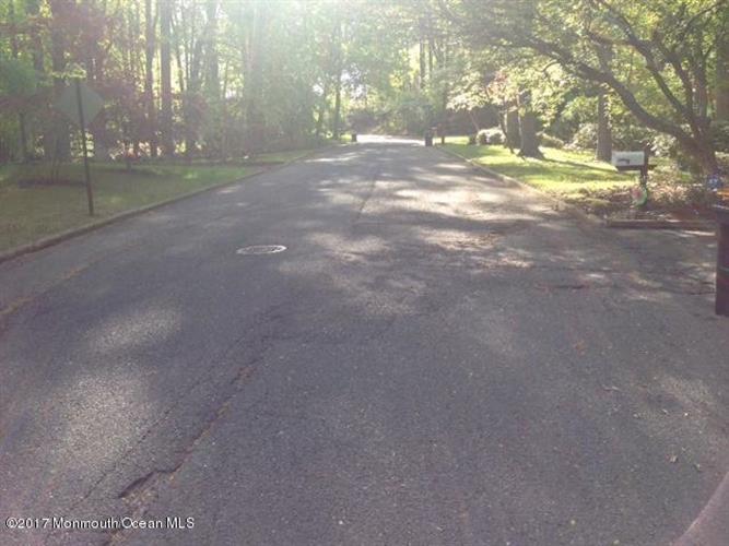0 Mt Drive, Holmdel, NJ - USA (photo 3)