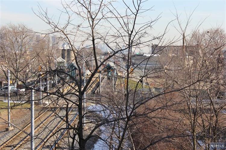 257 Arlington Avenue, Jersey City, NJ - USA (photo 2)