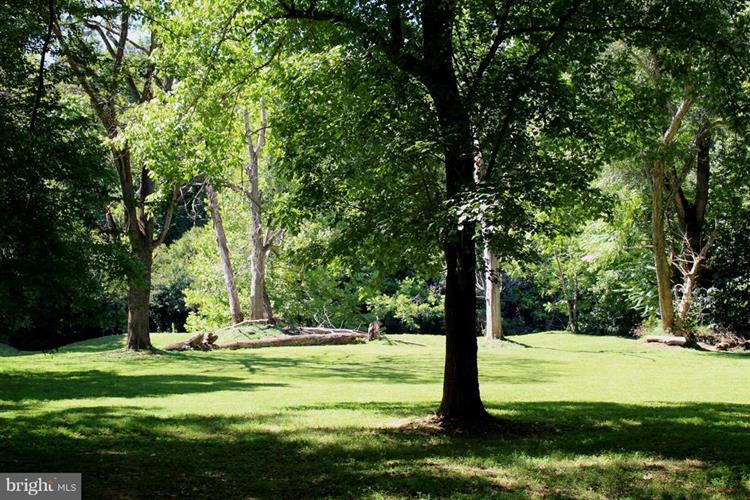 Enchanted Way, Locust Grove, VA - USA (photo 5)