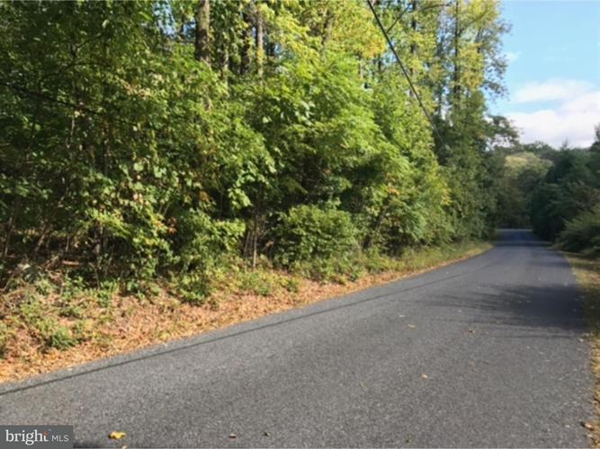 9521 Landis Lane, East Greenville, PA - USA (photo 4)