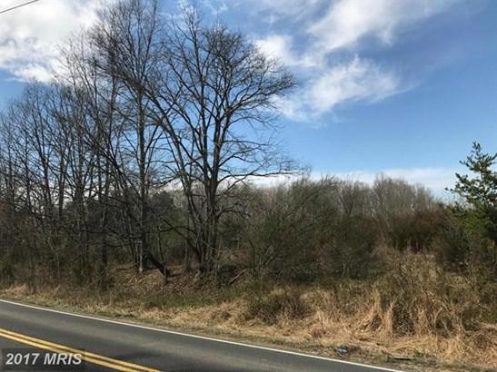 Not On File, Catlett, VA - USA (photo 2)