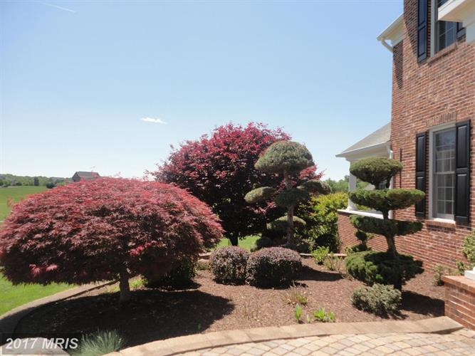 14934 Finegan Farm Dr, Darnestown, MD - USA (photo 4)
