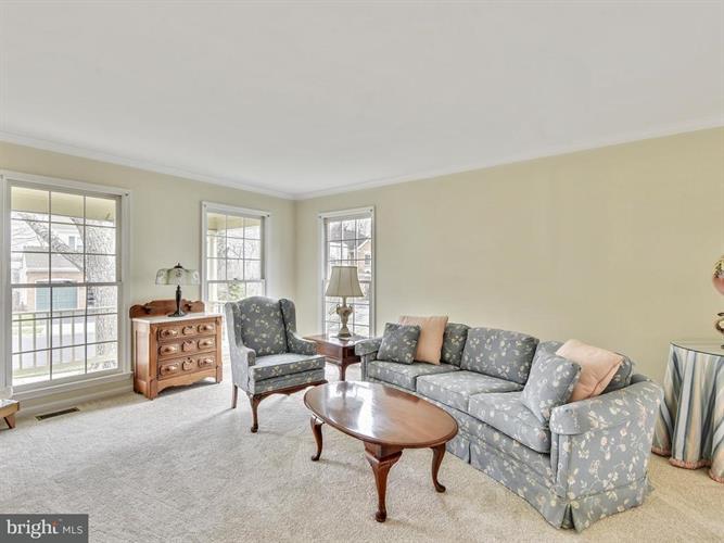 13617 Clary Sage Drive, Chantilly, VA - USA (photo 5)