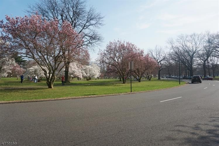 115 Hawthorne St, Roselle, NJ - USA (photo 4)