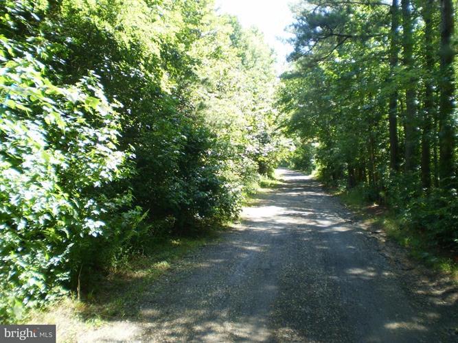 4574 Turkey Acres Rd, King George, VA - USA (photo 1)