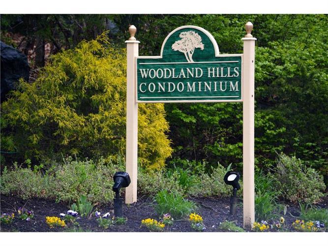 207 Woodland Hills Road 207, White Plains, NY - USA (photo 1)